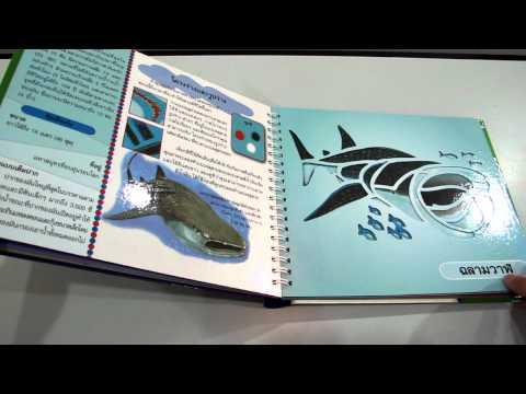 ฉลาม หนังสือฉลุลาย www.KidsbookThailand.com