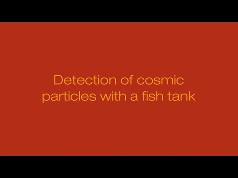 Detection of cosmic particles with a fish tank