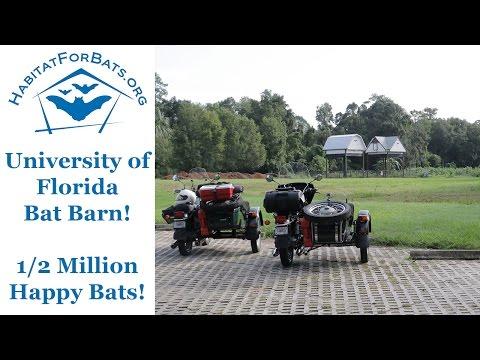 University of Florida Bat Barn