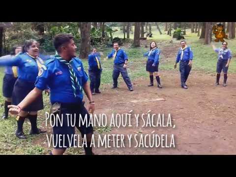 Canciones Scouts - El baile de los Lobatos - Sabios como Baloo