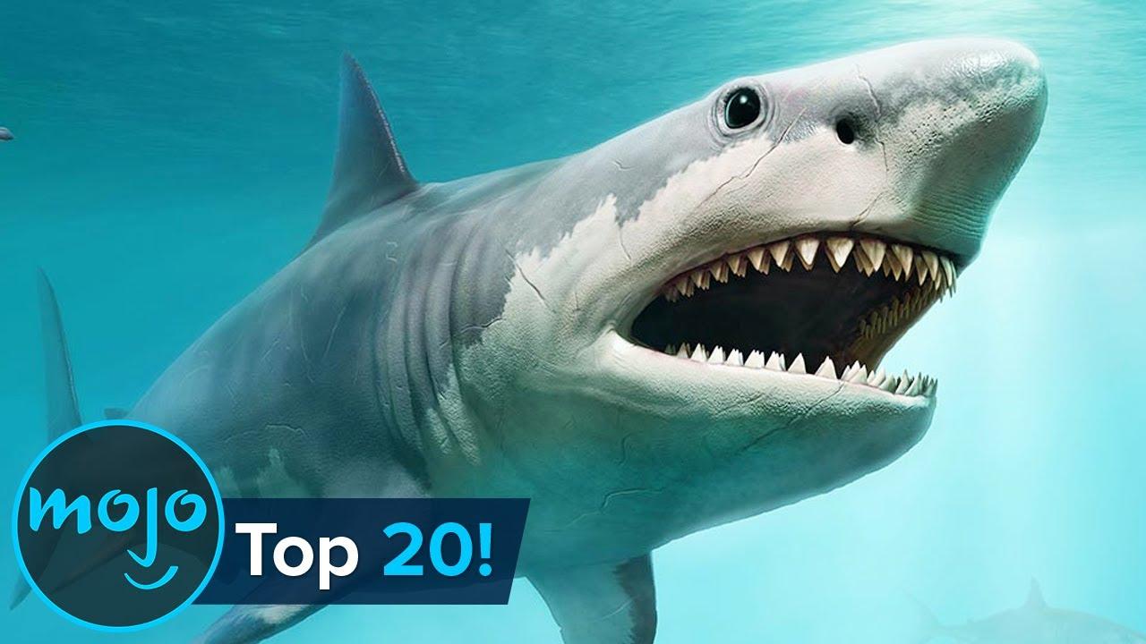 Top 20 Extinct Animals