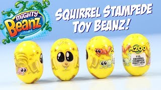 Mighty Beanz Squirrel Stampede Influencer Bean Opening 2018 Moose Toys