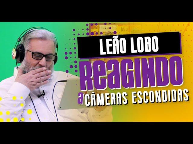 Leão Lobo Reagindo a Câmeras Escondidas | Reagindo - EP6
