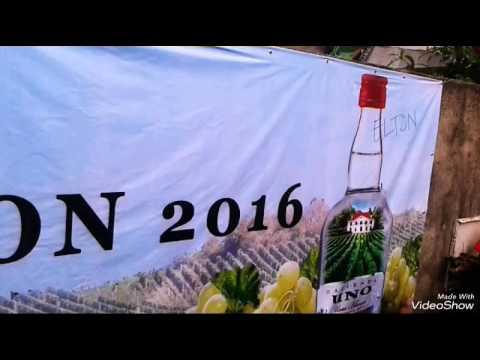 Parada ng Lechon 2016 in Balayan, Batangas! #ParadaNgLechon2016 #LahatKasamaMasaya #TMParadaNgLechon