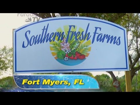 Southern Fresh Farms | Fort Myers FL