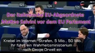 Der italienische EU-Abgeordnete Matteo Salvini vor dem EU Parlament (05.04.2017)