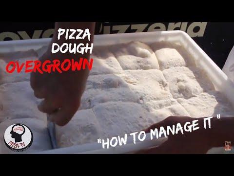 HOW TO USE NEAPOLITAN PIZZA DOUGH OVER GROW