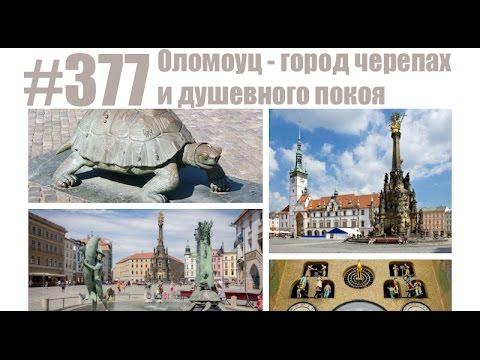 Учеба в чехии бесплатно, высшее образование в чехии и