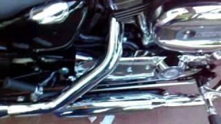 Ruggito della mia bestiolina... HarleyDavidson XL1200C 2010