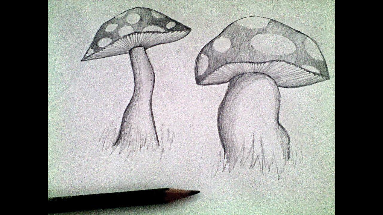 Mushroom pencil drawing tutorial youtube for How to draw a mushroom
