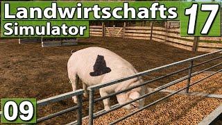 LS17 ► So ne SAUEREI! ► #9 Landwirtschafts Simulator 17 | LS 17