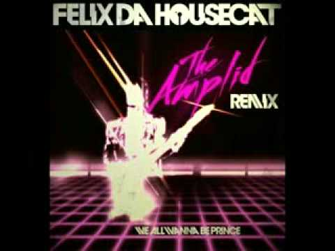Felix da Housecat - We all wanna be Prince (theAmplid remix)