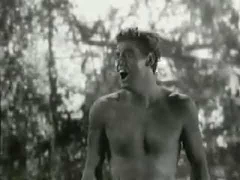 Johnny Weissm�ller: el grito de Tarz�n