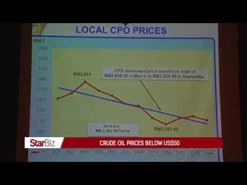 StarBiz TV: Palm oil price volatility to continue