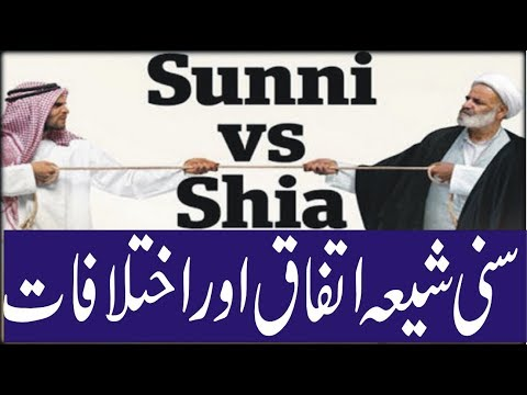 Sunni Shia Difference Chart In Urdu Hindi-the Bottom Line-documentary
