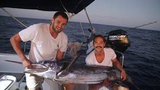 We Finally Landed a Marlin! (Sailing La Vagabonde) Ep. 68