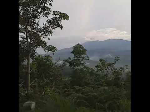 Dama Resto Kinari - Tempat Nongkrong Asik Di Kab. Solok