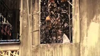 Don Omar-Dale don dale[Forsaj 5]