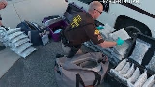Live PD: BIGGEST DRUG BUSTS
