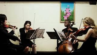 "iconiQ String Quartet - Largo from ""Winter"" (""The Four Seasons""), Vivaldi (exc.)"