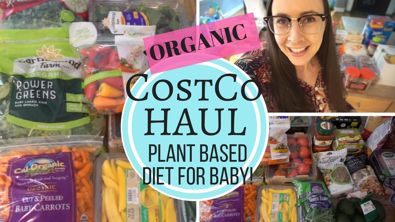 cf8321d3612 MONTHLY COSTCO GROCERY HAUL! Organic