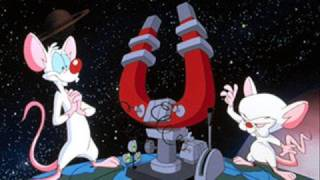 Pinky & The Brain Theme Song