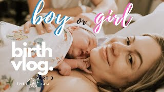 surprise gender reveal at birth | the east family