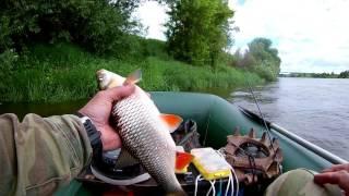река ока рыбалка на судака
