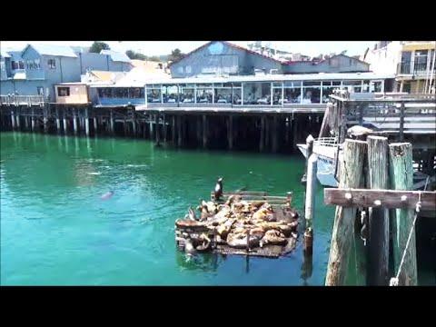 Fisherman's Wharf In Monterey. Clam Chowder!
