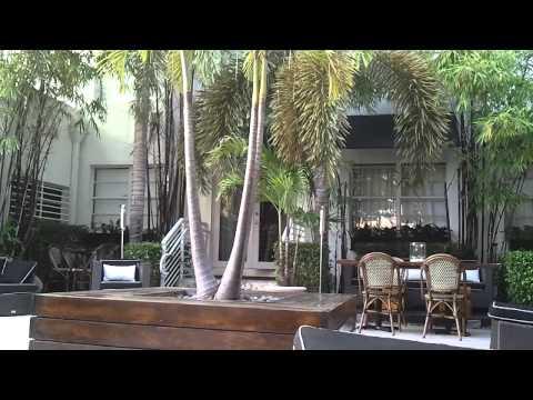 Inside The Jersey Shore Miami Pool Area