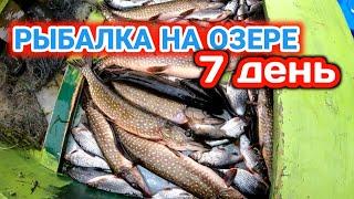 Весенняя Рыбалка сетями на Лесном Озере День 7