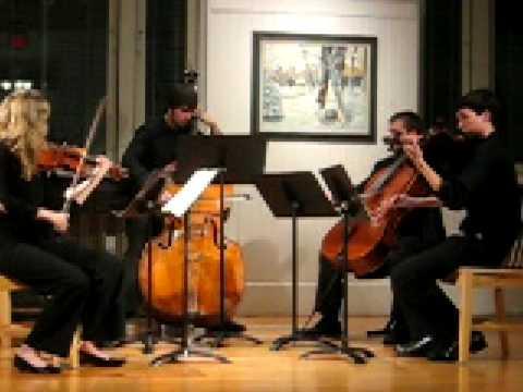 Musical Soiree - Dvorak