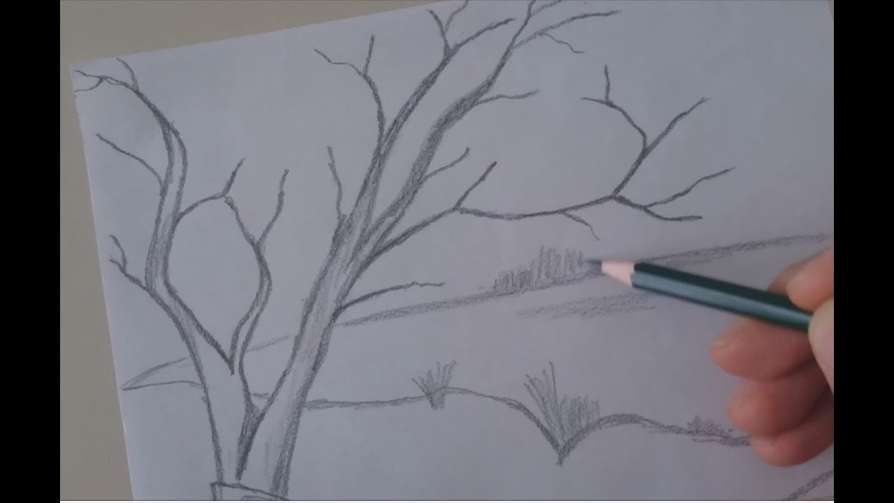 How To Draw Simple Tree