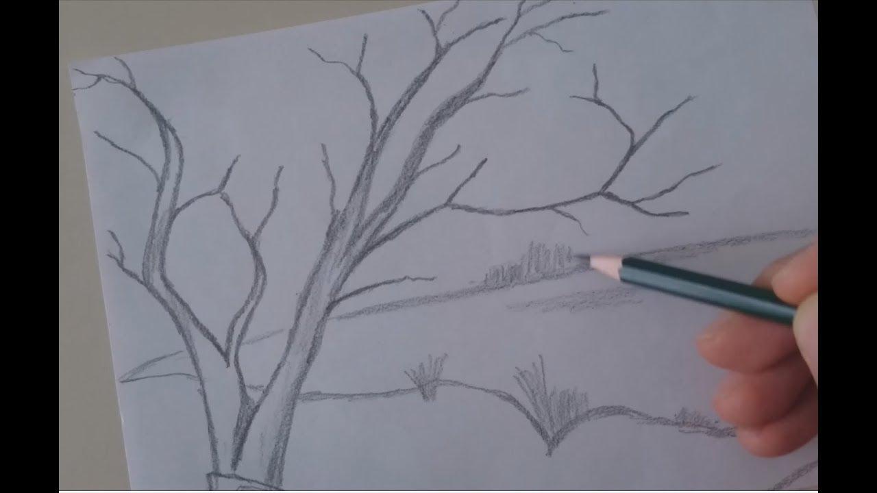 Karakalem Ağaç çizimi Youtube