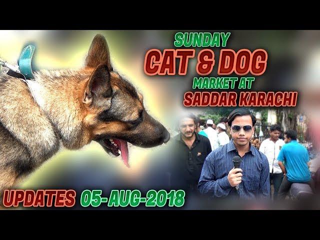 Saddar Dogs & Cats Sunday Market Karachi (Jamshed Asmi Informative Channel) In Urdu/Hindi