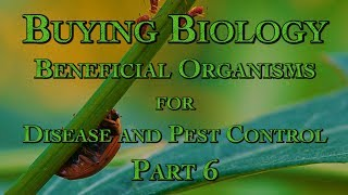 Buying Biology: Beneficial Organisms for Disease and Pest Control Part 6