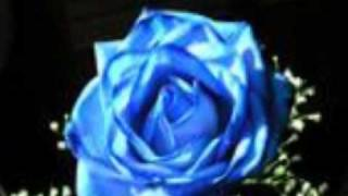 Una Rosa Blue -Gloria Trevi