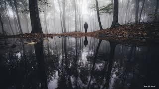 Мистическая Спокойная Музыка ♫ Таинственный Лес Дарк Музыка Онлайн