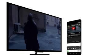 Из Яндекса — на большой экран