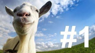 #1 Goat Simulator PS4 Live