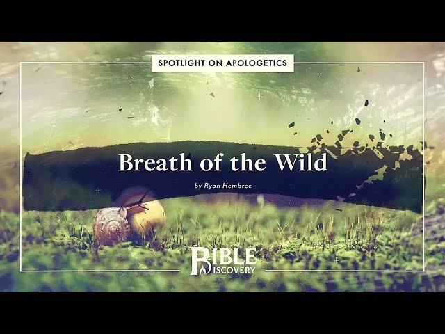 Will We Share the Same Fate as the Animals? | Spotlight on Apologetics | Breath of the Wild