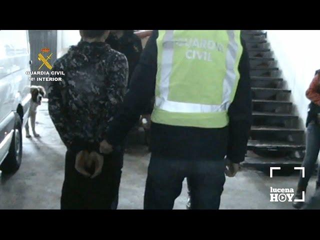 Vídeo: La 'Operación Villoleo' deja 5 detenidos en Lucena por presunto robo de aceite de oliva