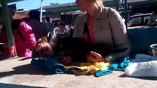 Рынок  домашних животных Кривого Рога.
