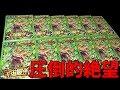 【SDBH】宇宙最凶の高額「超ブロリーくじ」を大量に買ってみた!!!!!