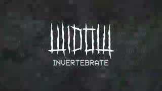 """Darke Complex - """"Invertebrate"""""""