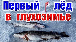 Первый лед в глухозимье Зимняя рыбалка в феврале 2020 Печенежское водохранилище Кулаковский залив