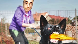 JUST FEED THE DOG BEFORE HE LOSES IT!!!! - Trick2G