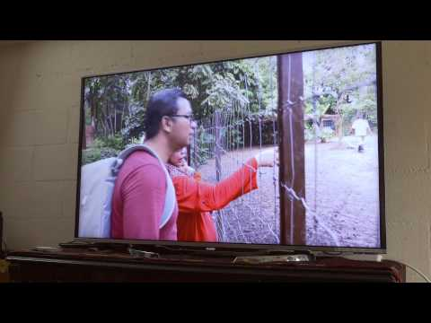 Ruby's Experience with Sharp AQUOS Quattron Pro