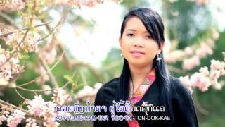 KARAOKE - STEREO HD ເພງ ນ້ຳຕາໄຫລໃຕ້ຕົ້ນດອກແຄ - ມຸກດາວັນ ສັນຕິພອນ / น้ำตาไหลใต้ต้นดอกแค คาราโอเกะ