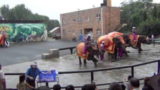 Далянь,зоопарк(Шоу слонов в городе Далянь., 2013-08-20T13:19:52.000Z)